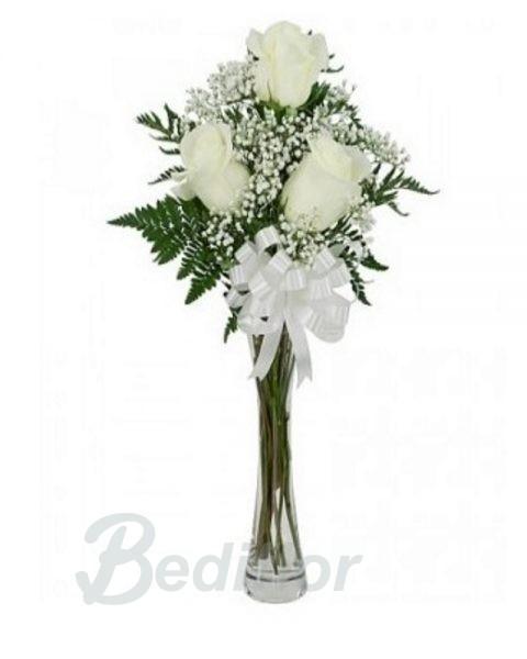 Rosas Blancas Bediflor