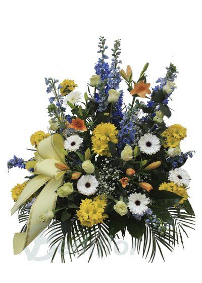 Centro Funerario Amarillo Tanatorio Envio Urgente