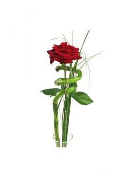 Rosa Individual Bambu