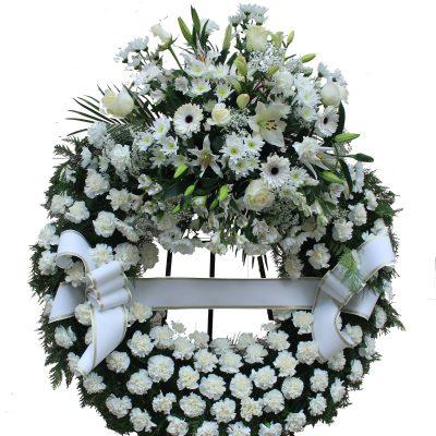 Corona Blanca EnvioTantorio