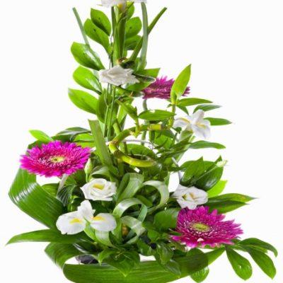 Regalar Centro de Flor tonos Verde y Blanco