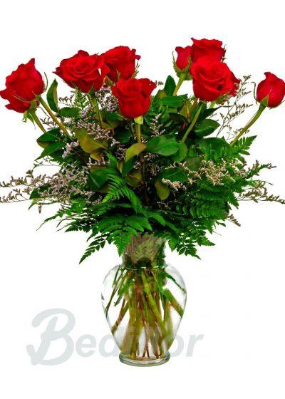 Elegante Ramo 8 Rosas Rojas Regalo