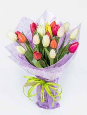 Bouquet de 20 Tulipanes