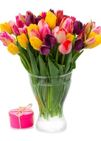 Enviar 40 tulipanes para regalar