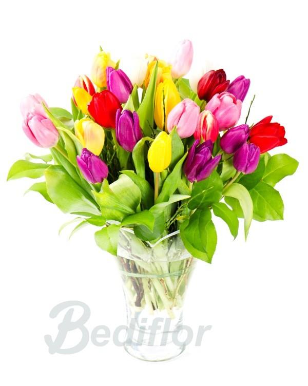 Ramo de 30 Tulipanes Variados
